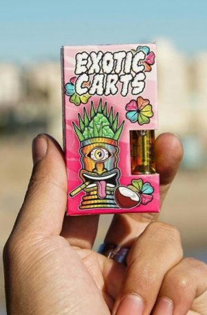 Exotic Carts Maui Wowie